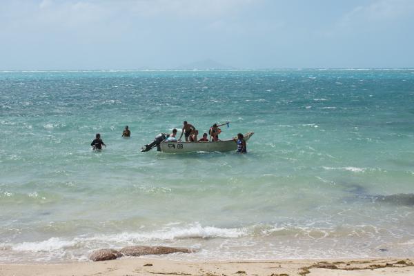Moa Island Residency 274