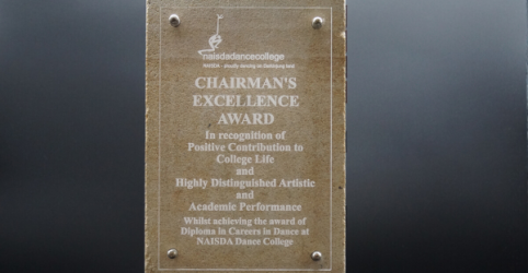 2019 Chairperson's Excellence Award