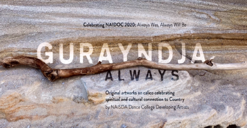 Outdoor cultural exhibition honours NAIDOC 2020 and Australia's 65,000+ year history