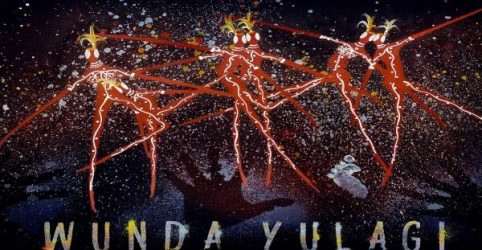 Spirit of the Dance guides NAISDA's 2020 achievements